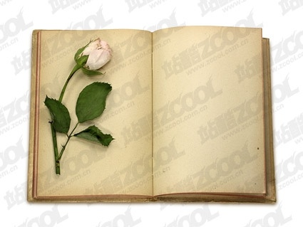 this fine picture of roses and books