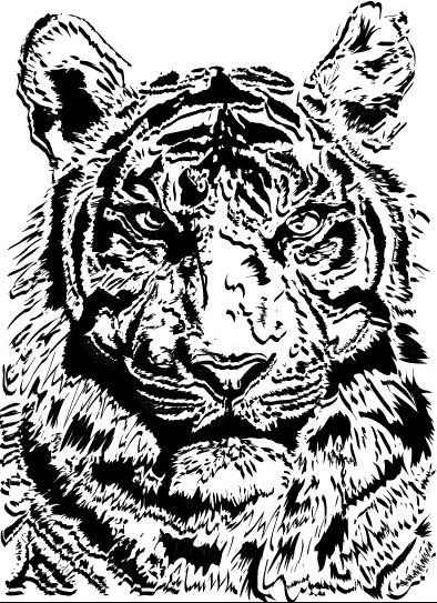 tiger vector free download free vector download  326 free Black Bear Clip Art Bear Paw Clip Art