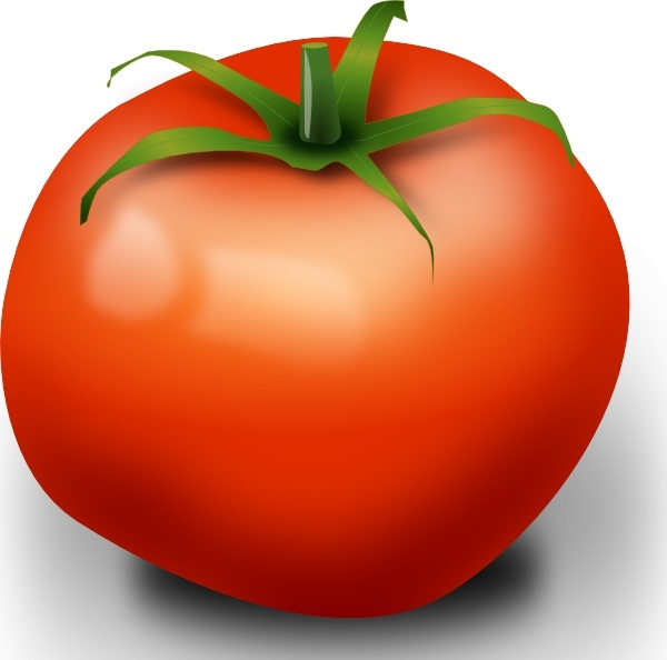 Tomato Clip Art Free Vector In Open Office Drawing Svg