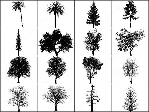 Tree Brush Photoshop Brushes In Photoshop Brushes Abr Abr