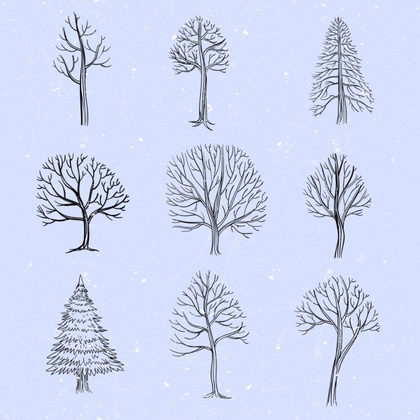 tree icons collection leafless decor handdrawn sketch