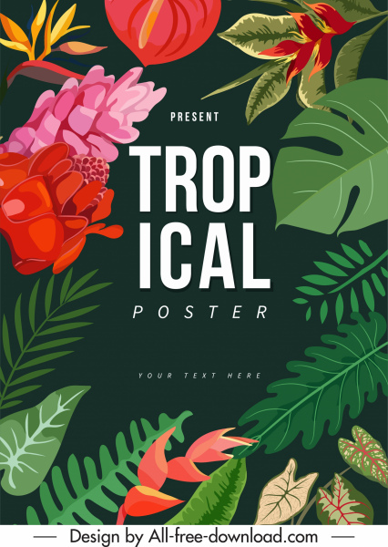 tropical nature poster colorful classic leaf floral decor
