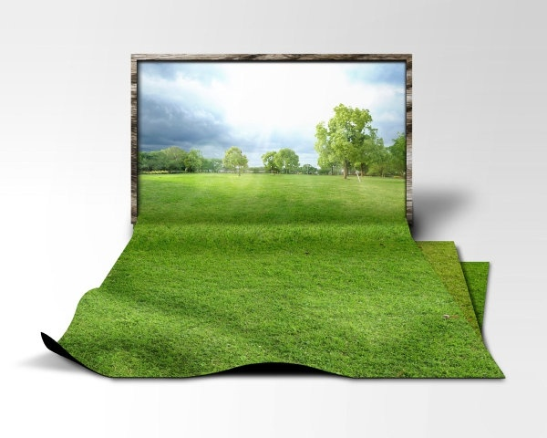 turf highdefinition picture