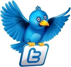 Twitter flying