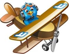 Twitter plane brown