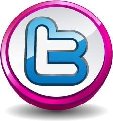 Twitter round pink