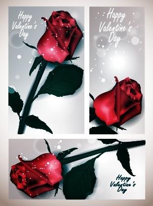 valentines day rose cards design vector