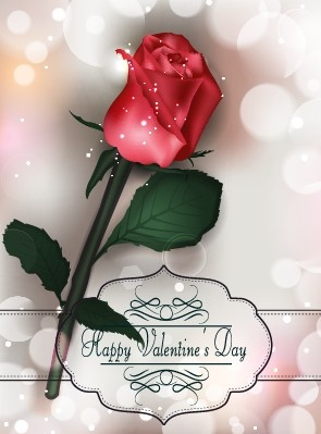 valentines day rose cards design vector