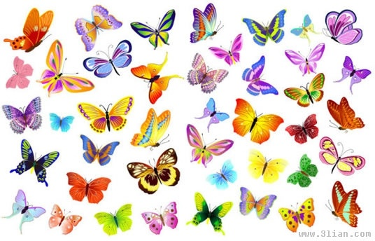butterflies icons collection colorful decor