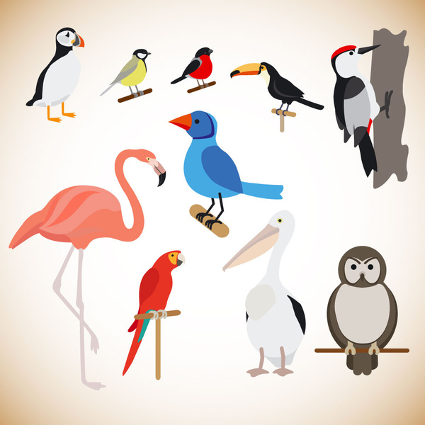 various birds vector illustration with color style free vector in rh all free download com Vector Bird Silhouette Bird House Vector Illustration