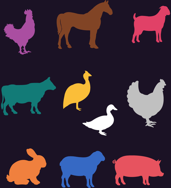various farm animals vector design with colorful style