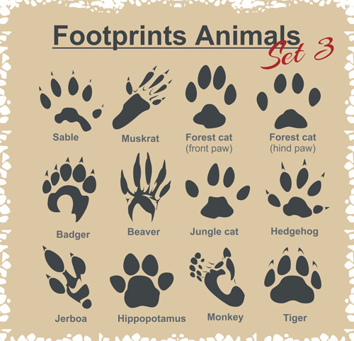 Footprint Free Vector Download 121 Free Vector For