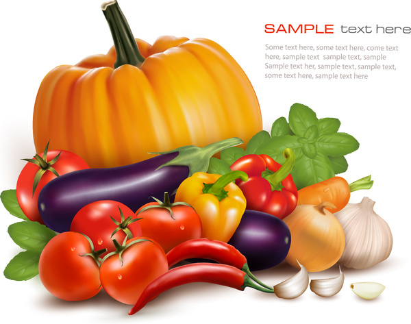 Various vegetables vector background Free vector in Adobe ...