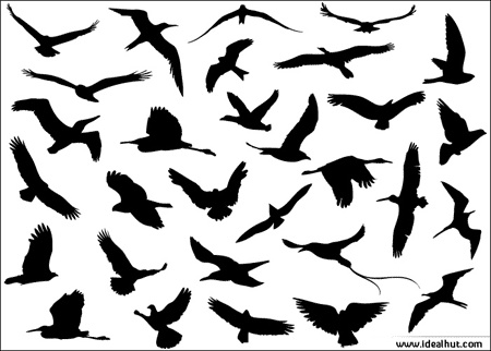 birds icons collection silhouettes style design