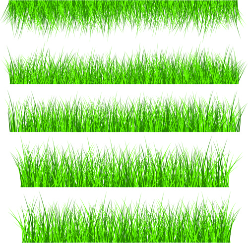 grass free vector download  1 043 free vector  for