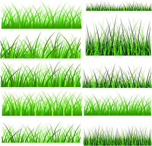 vector green grass elements set