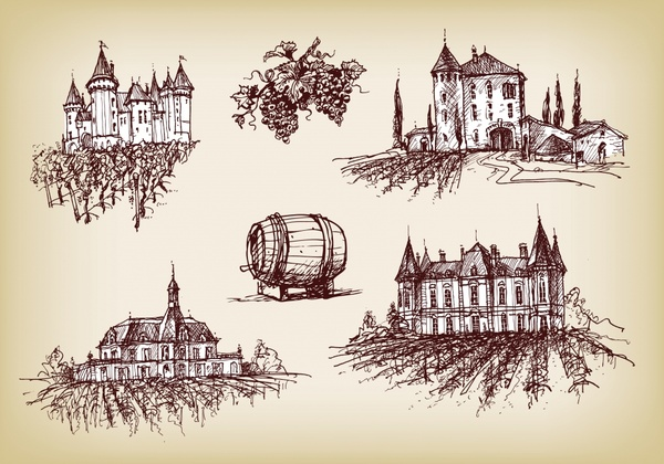 grape wine design elements retro handdrawn sketch