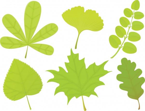 leaf shapes icons modern bright green design