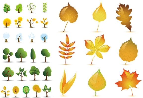 vector leaves of trees