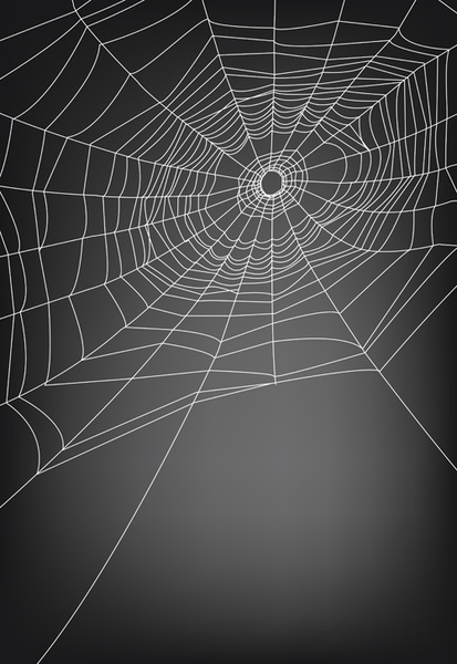 Spider Web Free Vector Download 4 676 Free Vector For