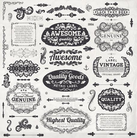 vintage label and ornaments design vector set