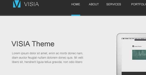 Visia Website Theme PSD