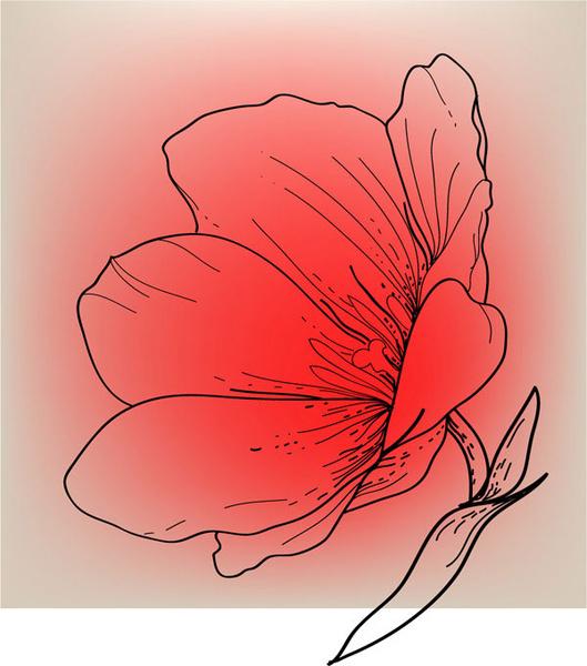 vivid hand drawn tulip background vector
