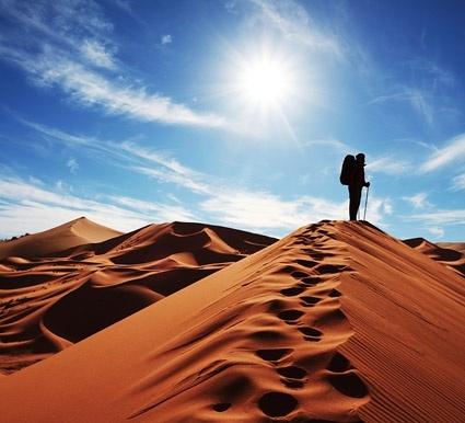 walk the desert picture