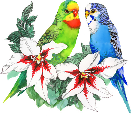 Watercolor Drawn Birds With Flowers Vector Design Free