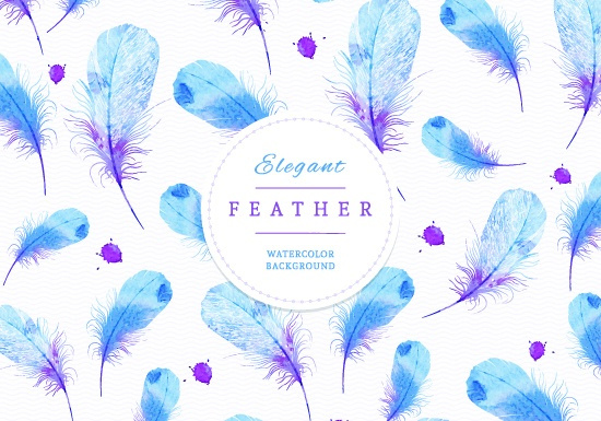 peacock feathers vector art free vector download 217192