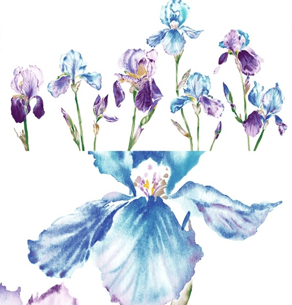 watercolor style orchid flower psd layered