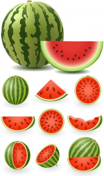 watermelon piece icons collection colored realistic design