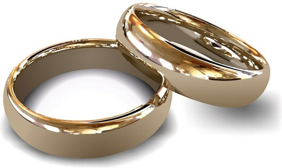 wedding ring vector 2