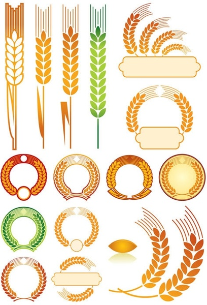 wheat 01 vector