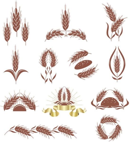 wheat 02 vector
