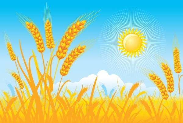 countryside landscape background cereal field sun icons