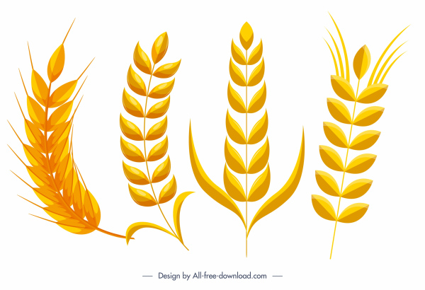 wheat flower icons bright flat yellow sketch