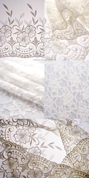 white gauze lace highdefinition picture 5p