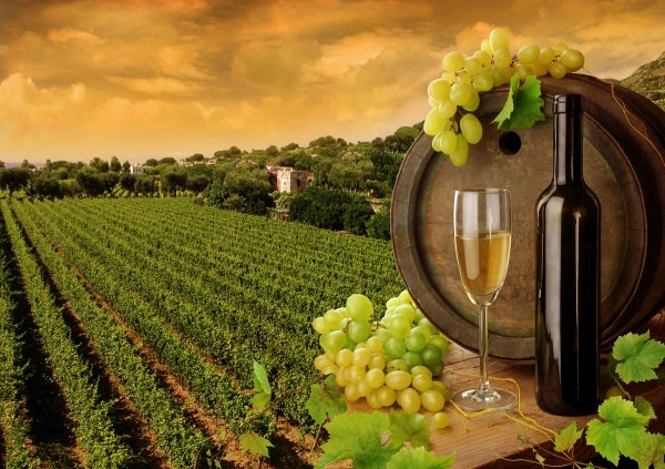 white wines of highdefinition picture 2