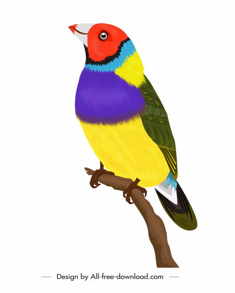 wild bird icon colorful decor perching sketch
