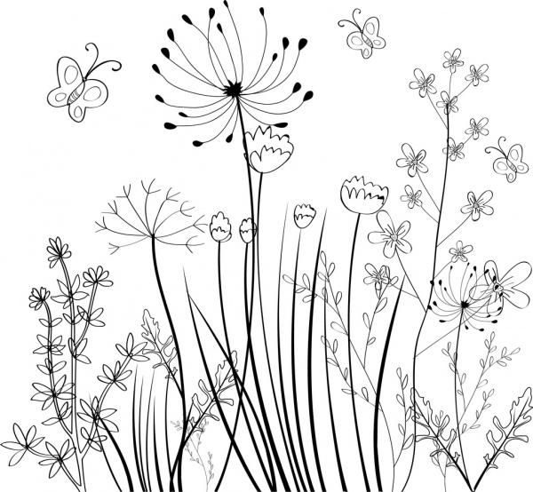 wild flowers field background black white sketch