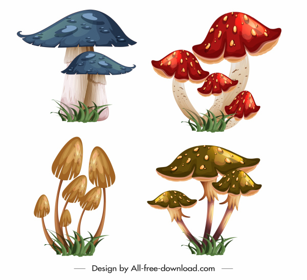 wild mushrooms icons colorful 3d sketch