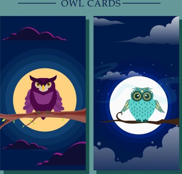 wildlife background sets owl round moon icons decor