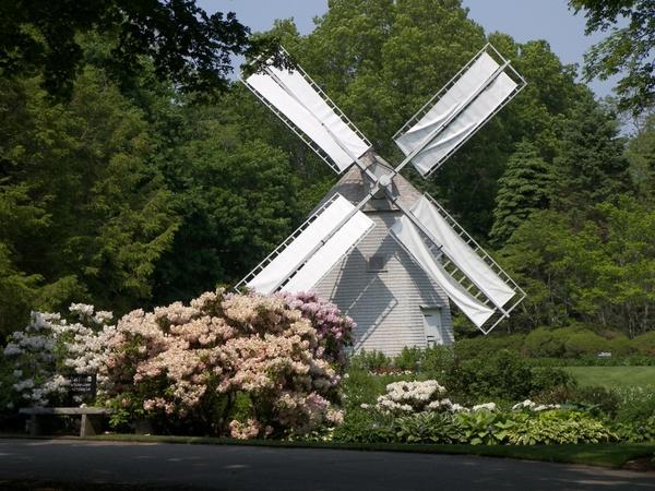 windmill sandwich ma