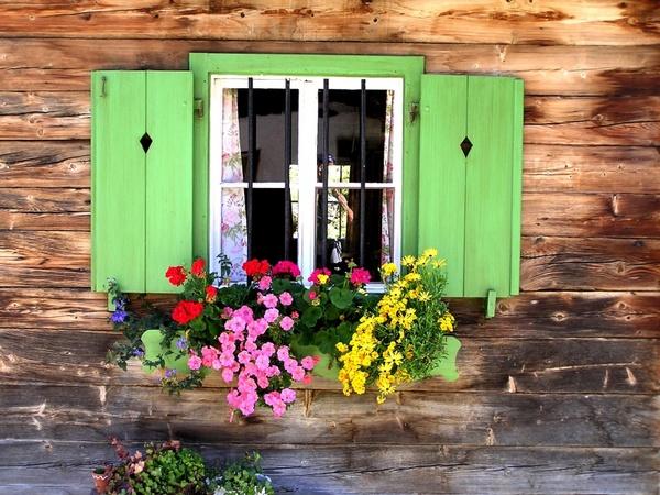 window baita window grilles