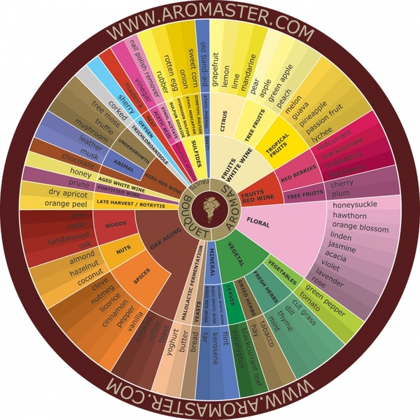 Wine Aroma Wheel Pdf