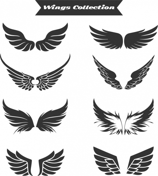 wings icons collection flat black white design