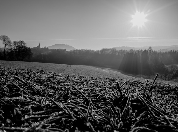 winter morning sun