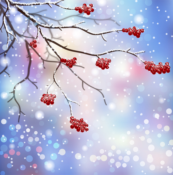 winter scenes with branch and red fruit free vector in adobe