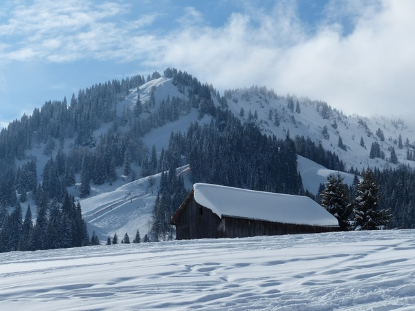 wintry winter magic snow magic